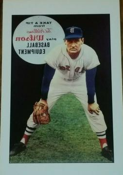 ted williams baseball gloves poster boston red