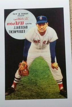ted williams poster baseball gloves boston red